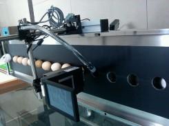 枣庄鸡蛋喷码机